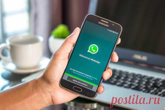 Как узнать, что в твой WhatsApp вошел другой человек и видит все переписки   Техносовет   Яндекс Дзен