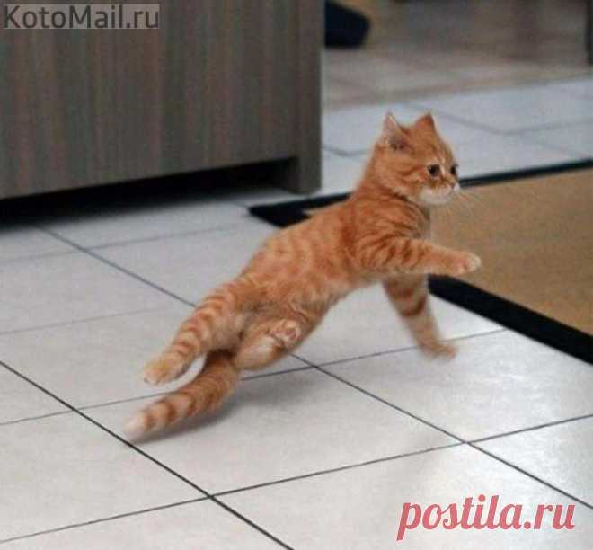 Смотри КАК нужно танцевать!