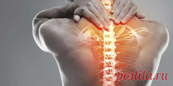4 упражнения для лечения остеохондроза шеи и спины от доктора(+GIF) | Здоровье с удовольствием | Яндекс Дзен