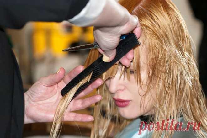 9 досадных ошибок, из-за которых мы выходим от парикмахера в слезах   Всегда в форме!