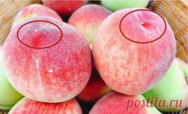 """Когда покупаете персики, берите """"мальчиков"""", они слаще: 5 подсказок от садовода"""