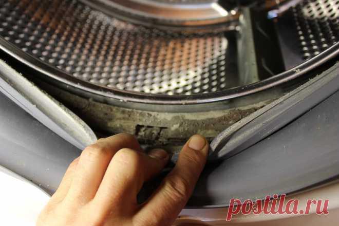 Заглянул в углубление резиновой манжеты в стиральной машинке, а там много грязи, чем я очистил манжету без особых усилий | Дневник оптимиста | Яндекс Дзен