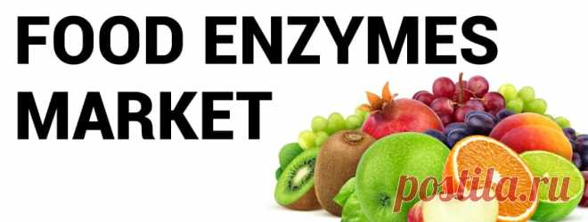 Food Enzymes Market Size, Share   Global Industry Trends, 2027