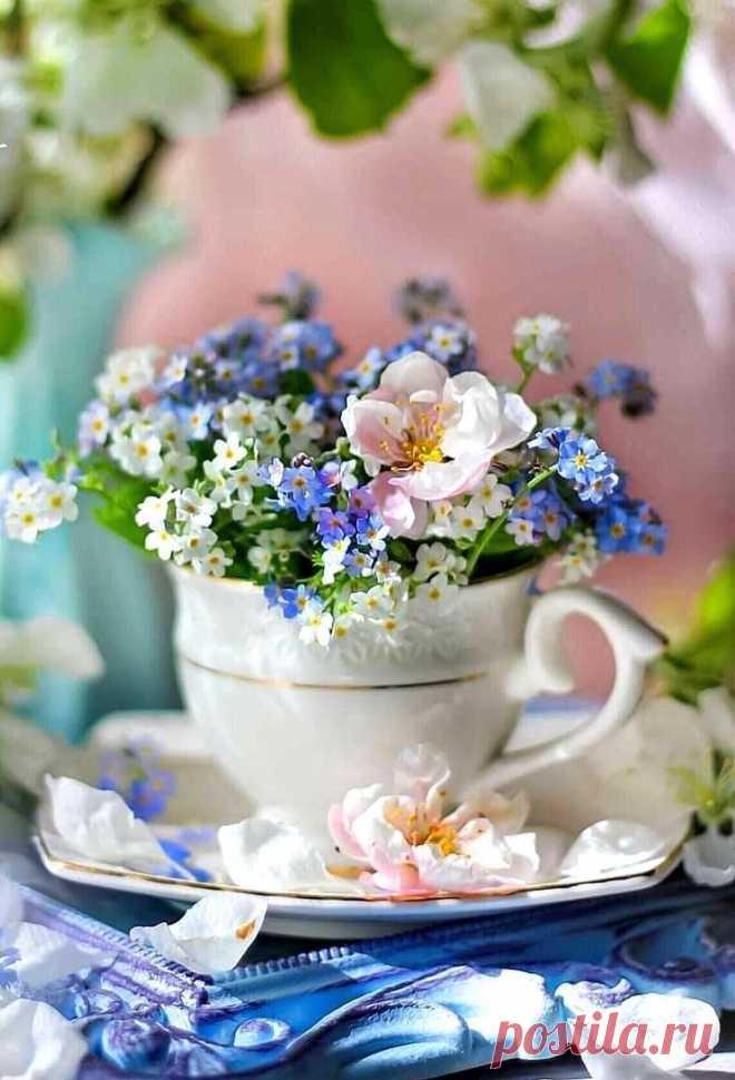 ღНежного, доброго всем Утра!