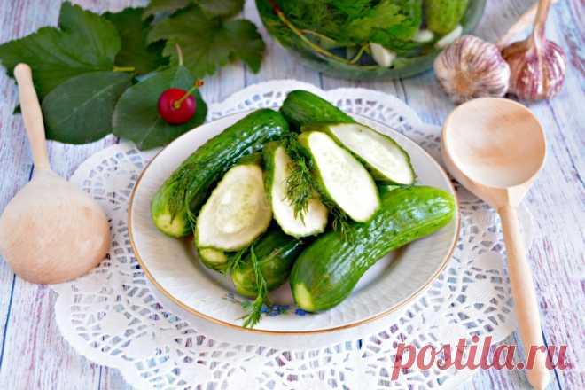 Малосольные хрустящие огурцы быстрого приготовления рецепт с фото пошагово и видео - 1000.menu