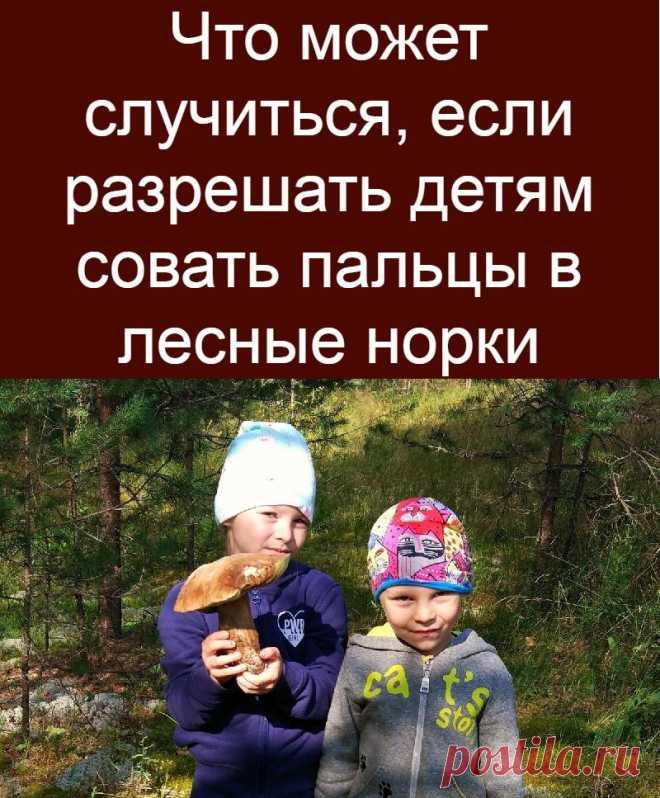 Что может случиться, если разрешать детям совать пальцы в лесные норки