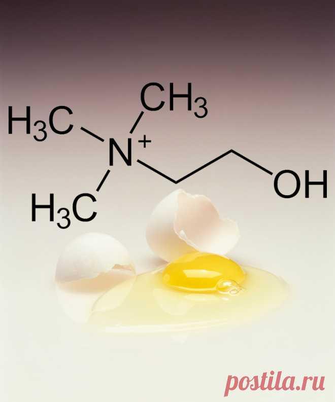 Лучшие источники витамина В4 Витамин группы В — холин — является важным для организма питательным веществом, которое тело производит в небольших количествах. Поэтому холин необходимо получать из ежедневного рациона. Какие же продукты являются лучшими источниками холина?