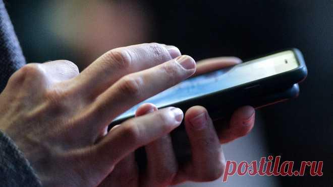 Специалист назвал способ узнать владельца номера телефона через интернет - РИА Новости, 21.11.2020