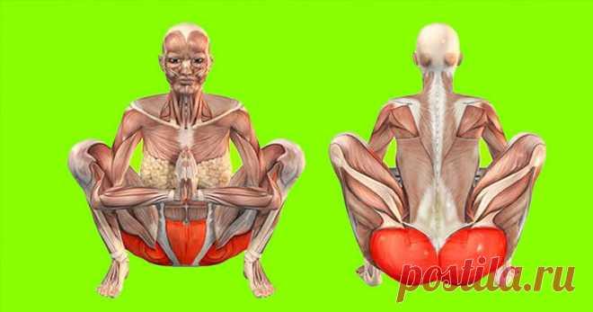 Техника «маласана»: делайте упражнение каждый день, и ваше тело преобразится | Тысяча и одна идея Есть такая древняя техника под названием «маласана». Если выделять на такое упражнение всего несколько минут в день, ваше тело уже вскоре скажет вам спасибо. Упражнение способно на многое: расщепляет жиры, тонизирует органы в брюшной полости, устраняет менструальные сбои и смягчает боли во время менструаций.