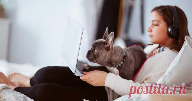 Круче учебника: 5 классных сайтов для самообразования Online education rules!
