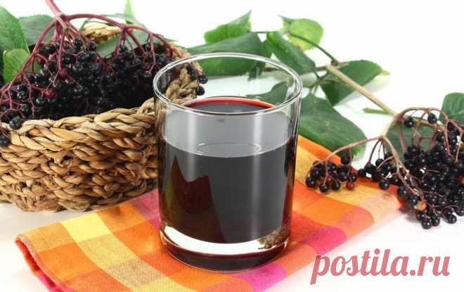 Домашнее вино из черноплодной рябины без дрожжей | Журнал