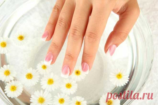 How quickly to grow nails which will never break: simple means from 4 components will help! - That the woman wants