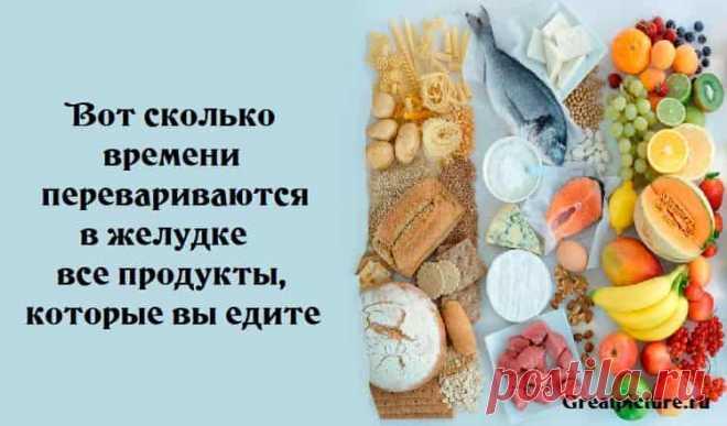 Сколько переваривается пища - таблица времени переваривания продуктов » Женский Мир