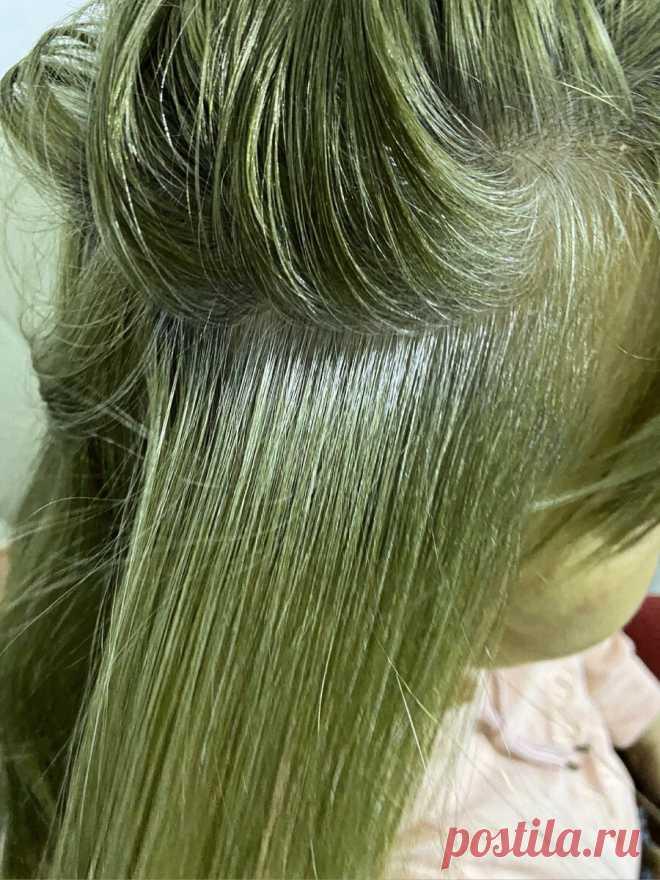 Почему на седых волосах проявляется зелень при окрашивании? | Женя Жульева (КОЛОРИСТИКА ВОЛОС) | Яндекс Дзен
