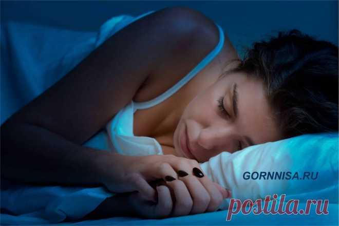 Ночная жизнь - чем занят организм, когда мы спим | ГОРНИЦА