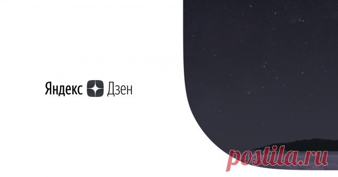 модное решение   Яндекс Дзен модное решение