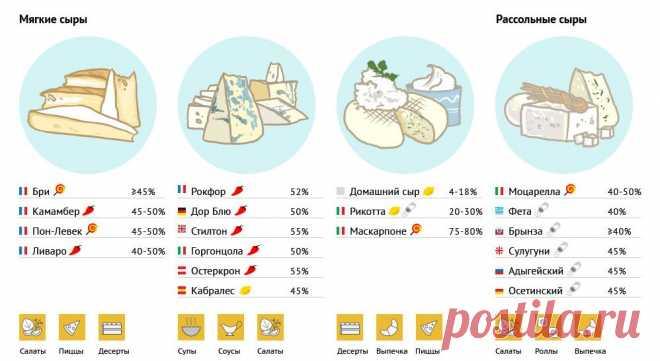 Куда и какой сыр использовать | ОПТИМИСТ