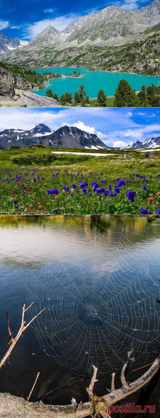 Пейзажи горного Алтая.