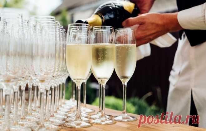 Напиток дьявола и королей: интересные факты о шампанском, которых вы могли не знать   Журнал