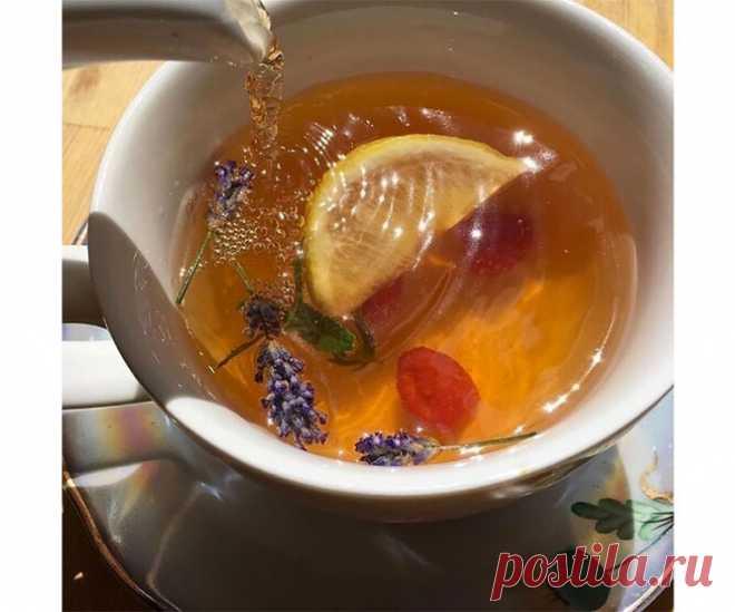 Ромашка или мята: какой травяной чай самый полезный