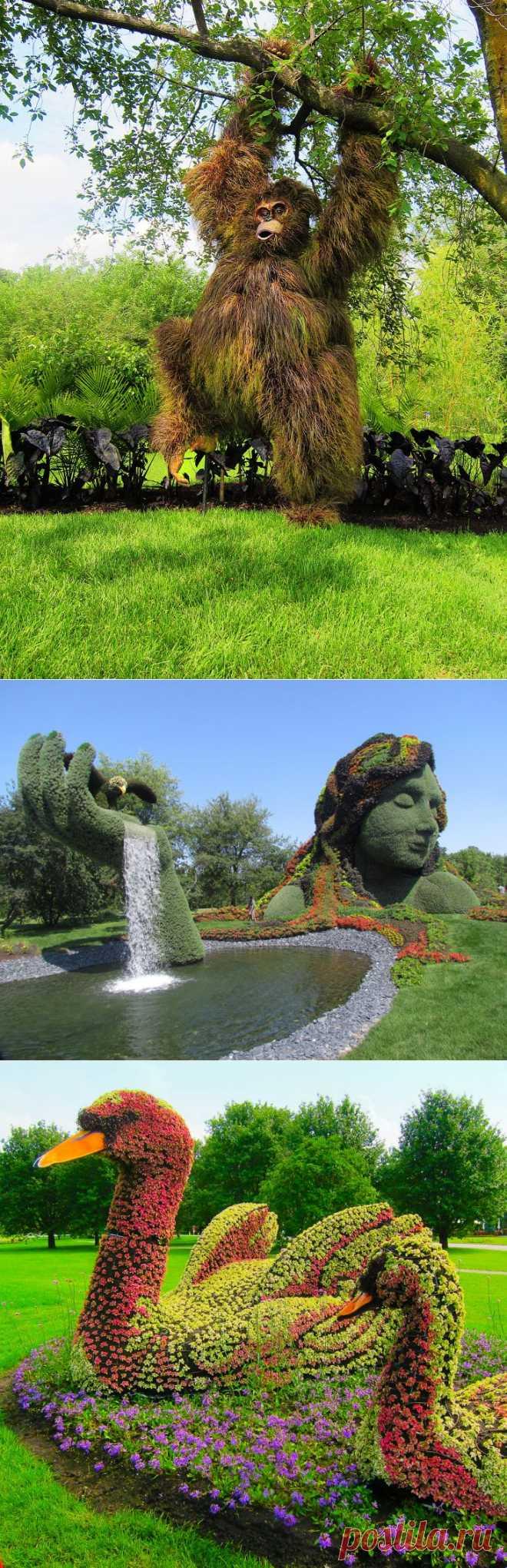 >> Скульптуры из растений. Международная выставка в Монреале | ФОТО НОВОСТИ