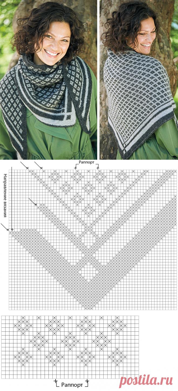 Бактус с двусторонним узором — схема вязания спицами с описанием на BurdaStyle.ru