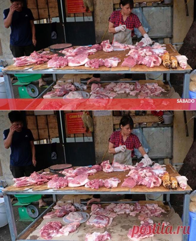 China volta a detetar Covid-19 em carne importada do Brasil - Mundo - SÁBADO