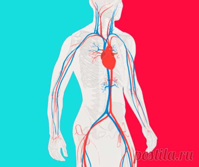 Китайские упражнения для снижения артериального давления Упражнения для повышения жизненного тонуса и работоспособности, усиления иммунитета, оздоровления различных систем организма, увеличения продолжительности жизни.