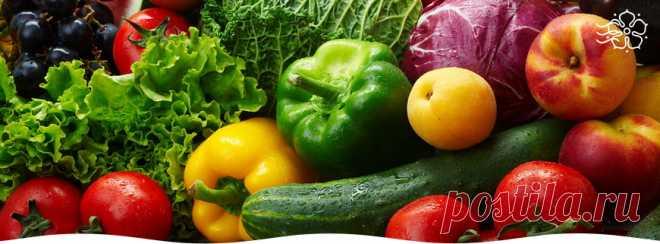 Овощной севооборот на приусадебном участке. Планируем заранее Расскажем, как правильно составить овощной севооборот, подскажем какие культуры «дружат» между собой, а какие плохо влияют друг на друга.