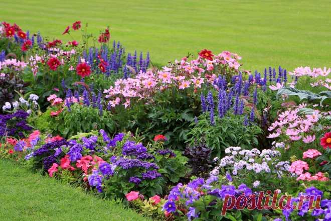 20+ квітів, які можна посіяти під зиму. Назви. Опис. Фото - ЗЕЛЕНА САДИБА Посіяти квіти під зиму варто хоча б тому, що деякі з них так ростуть якнайкраще. А ще - це майже безкоштовна загартована розсада однорічних і багаторічних квітів. Які квіти посіяти під зиму, читайте в нашій статті.