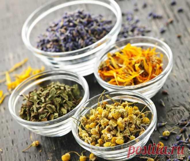 Тибетские рецепты очищения организма По своей эффективности тибетское очищение организма стоит в одном ряду со многими медицинскими процедурами. В то же время это средство является натуральным природным лекарством, не содержащим ничего л...
