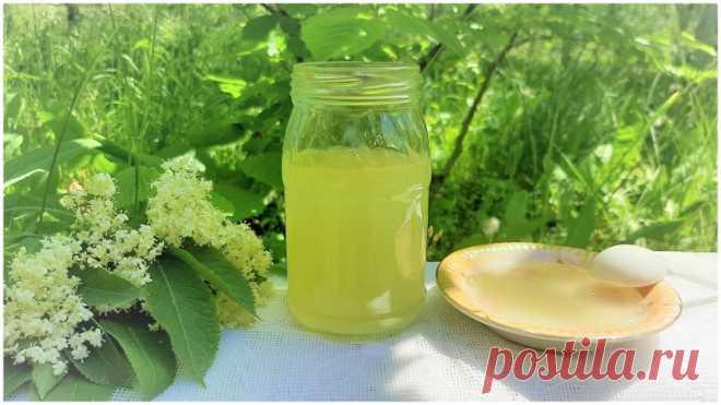 Сироп из цветков черной бузины Сироп из цветков черной бузины – очень полезный, ароматный и вкусный продукт. Отличный для приготовления напитков, прослойки коржей тортов, также используется как лекарственное средство.Ингредиенты:бузина черная (соцветия) – 10 шт.;вода – 0,5 л.;сахар – 0,5 кг.,лимон – 0,5 шт.;апельсин –...