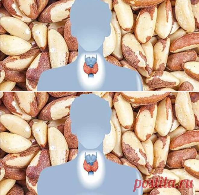 5 общих дефицитов питательных веществ, обнаруженных почти у всех людей с заболеванием щитовидной железы! - Счастливые заметки
