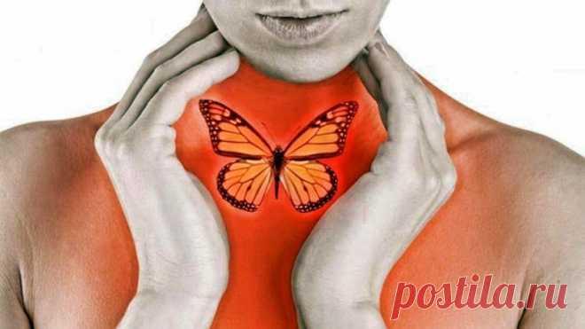 10 предупреждающих признаков того, что у вас может возникнуть проблема со щитовидной железой - Упражнения и похудение Обратите внимание! Увеличение веса, плохая концентрация, боли и капризность? Что пошло не так? Может быть, крошечная железа в вашей шее может быть проблемой. Когда ваша щитовидная железа работает неправильно, она может нанести существенные изменения в различные функции вашего тела. Есть много признаков, которые показывают, что ваша щитовидная железа функцио...