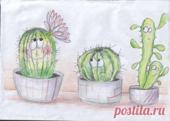 Рисуночный тест «Кактус» | Профессионалы.ru