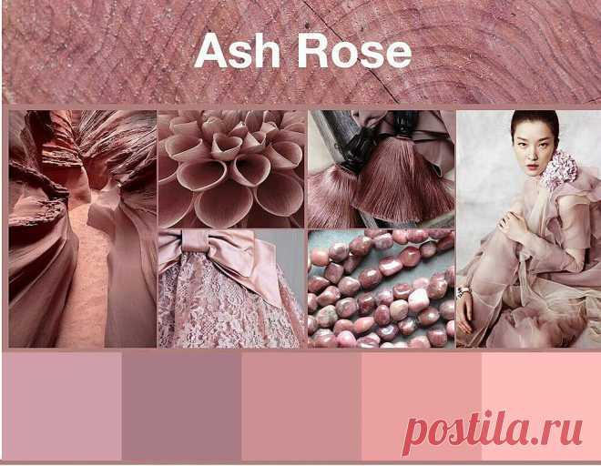 Текстиль цвета пыльной розы: с интерьерами какой цветовой гаммы он сочетается лучше всего | Dream house | Яндекс Дзен