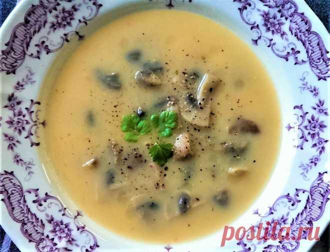 Суп-пюре с сыром и грибами | Поделки, рукоделки, рецепты | Яндекс Дзен