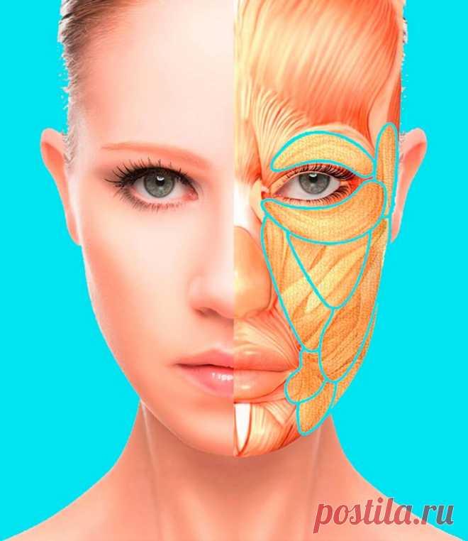 Омолаживающая техника для лица и шеи / Все для женщины