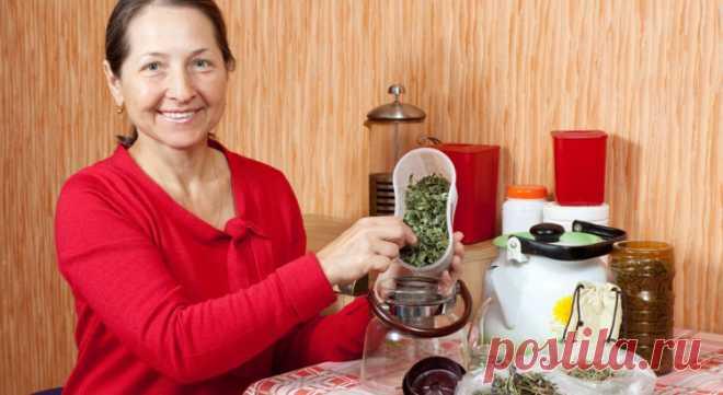 Когда старость на пороге: омолаживающие чаи — Мир интересного