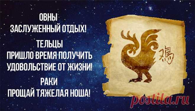 Самый точный гороскоп на год Красного Петуха | Зеркало Венеры