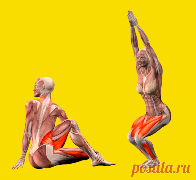 Упражнения для улучшения пищеварения Если вы хотите всегда чувствовать себя бодро и иметь приподнятое настроение, прежде всего, вам необходимо наладить работу процесса пищеварения. А для этого достаточно регулярно выполнить несколько простых упражнений.