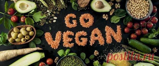 Вегетарианство головного мозга.