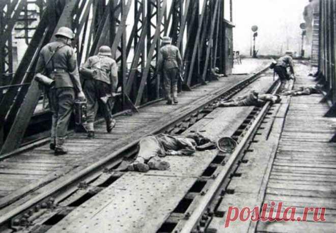 Вся Европа воевала против СССР: foto_history — ЖЖ