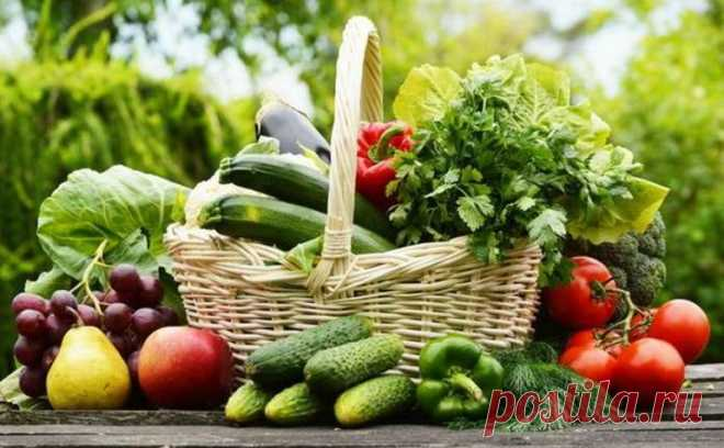 Летняя диета для эффективного похудения