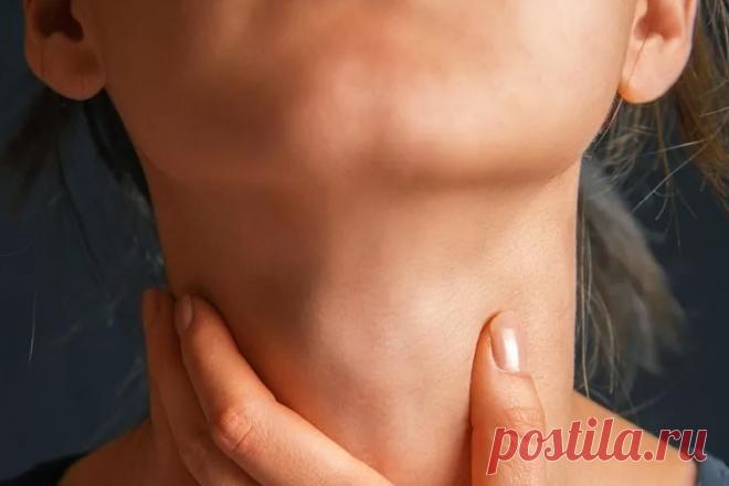 Укрепление подбородка и передней поверхности шеи для сохранения чёткого овала лица | Роза Красная | Яндекс Дзен