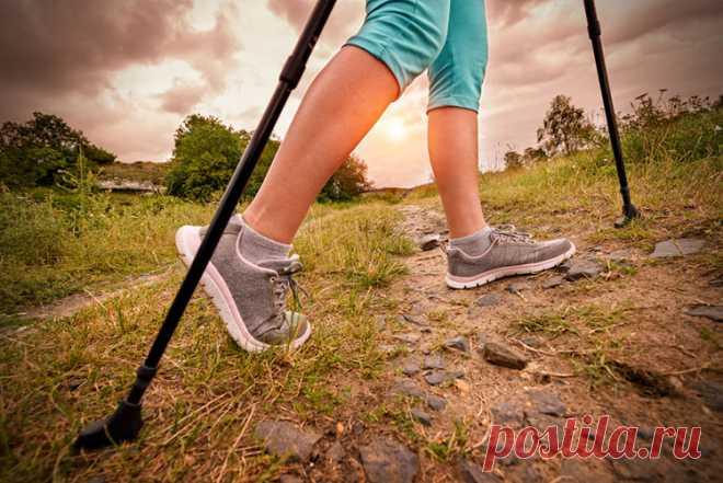 Скандинавська ходьба: що це за спорт і чому він не тільки для бабусь. Пояснює інструктор | Українська правда _Життя