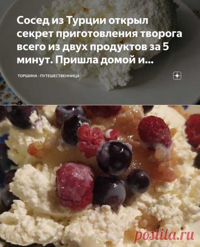 Сосед из Турции открыл секрет приготовления творога всего из двух продуктов за 5 минут. Пришла домой и наготовила на неделю | Торшина - путешественница | Яндекс Дзен