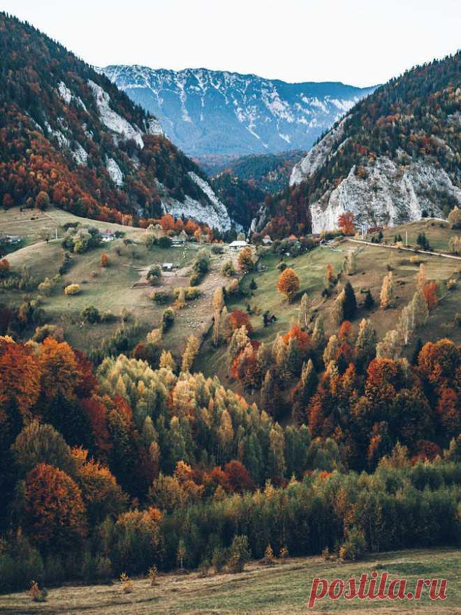 Galerie schöner Dinge und Natur — drxgonfly: Autumn vibes in Transylvania...