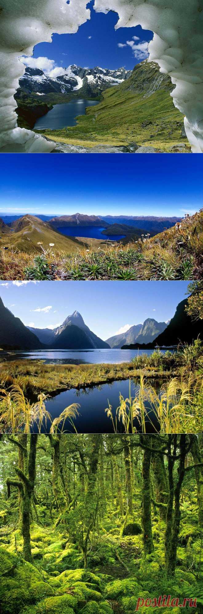 Фьордленд: невероятно красивый Национальный парк в Новой Зеландии - Terra-Z