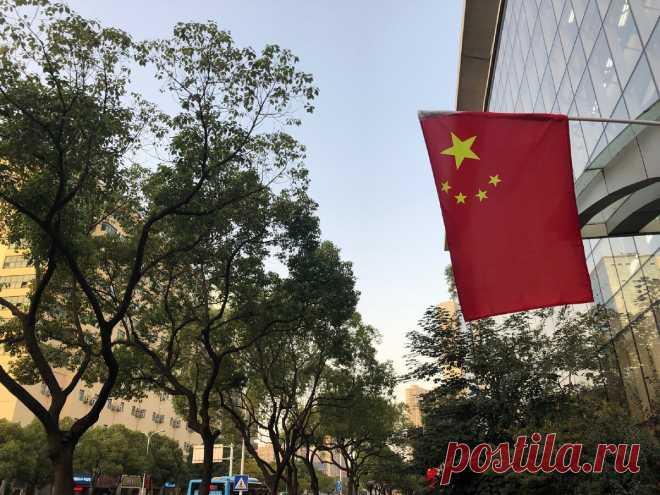 Решил, что в России мне не место и поступил в китайский ВУЗ | Записки Макса из Китая | Яндекс Дзен